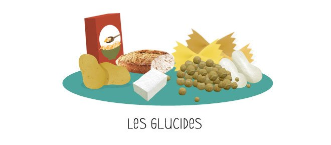 Le 231 On N 176 4 Les Glucides Nutriting