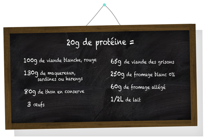 Equivalences d'une portion de 20g de protéine