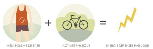 Métabolisme de base + Activité Physique = Energie dépensée par jour