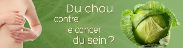 Manger du chou aiderait à lutter contre le cancer du sein