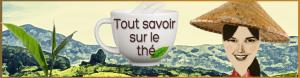 Tout savoir sur le thé