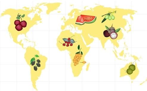 Production et consommation de fruits dans le monde