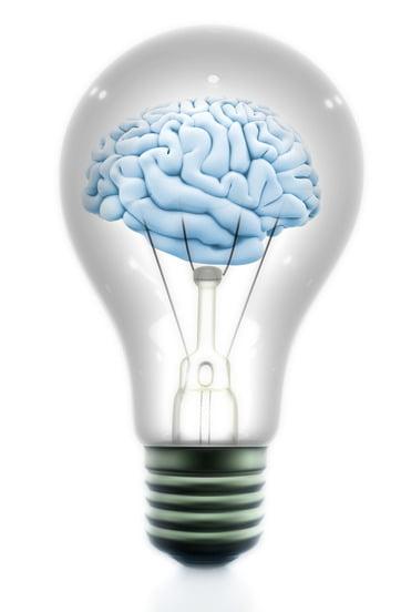 Cerveau et énergie