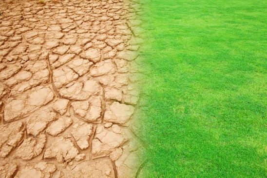 Epuisement des terres fertiles