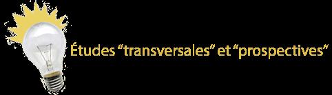 Etudes « transversales » et « prospectives »