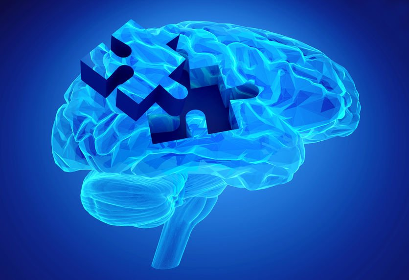 Cerveau et déclin cognitif