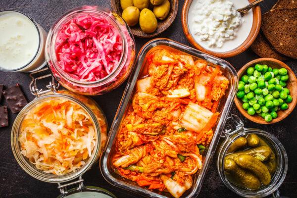 Aliments fermentés et probiotiques