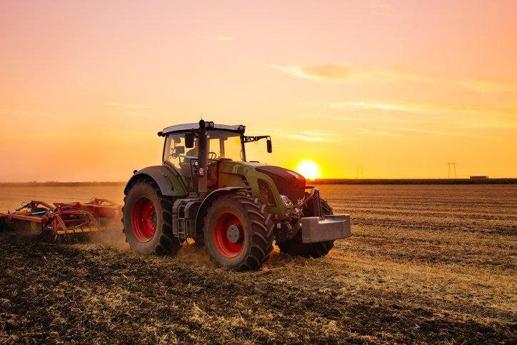 Potager - Pas de travail du sol