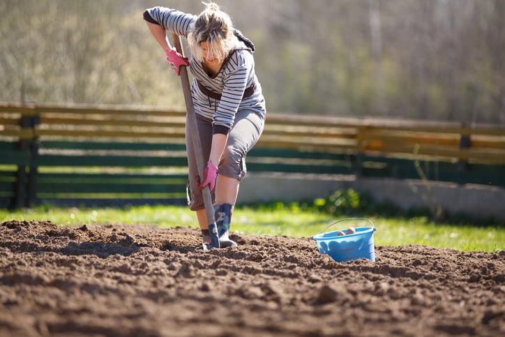 Un sol en mauvaise santé