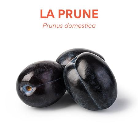 La prune